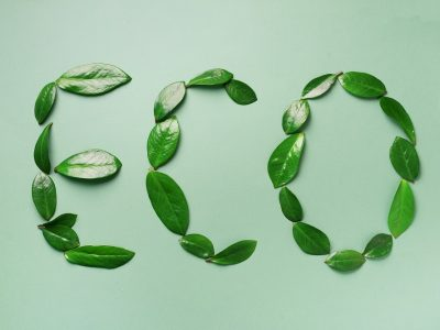 Word Eco made of leaves on green background. Top view. Flat lay. Ecology, eco friendly planet and sustainable environment concept. Think green.
